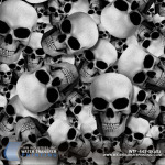 WTP-445-Skullz